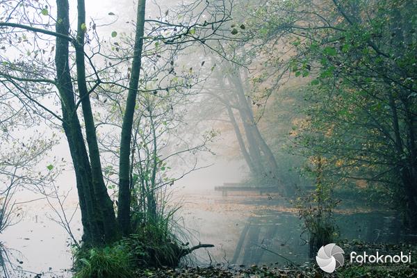 Nebelsteg