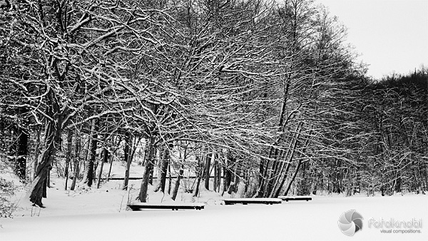 Stege im Schnee
